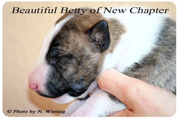 Beautiful-Betty-seite-Tag14