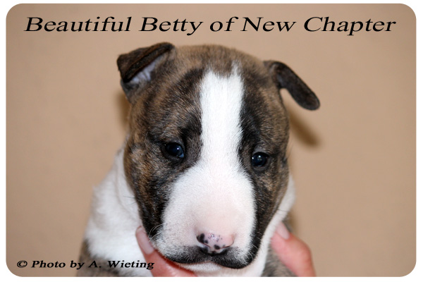 Beautiful-Betty-front-Tag35