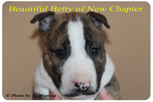 Beautiful-Betty-front-Tag41