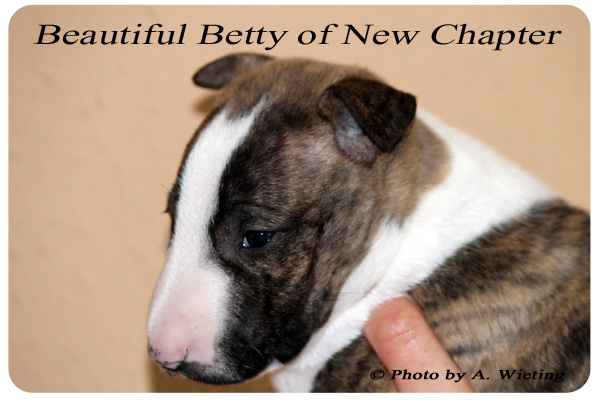 Beautiful-Betty-seite-Tag35