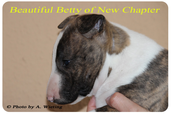 Beautiful-Betty-seite-Tag41