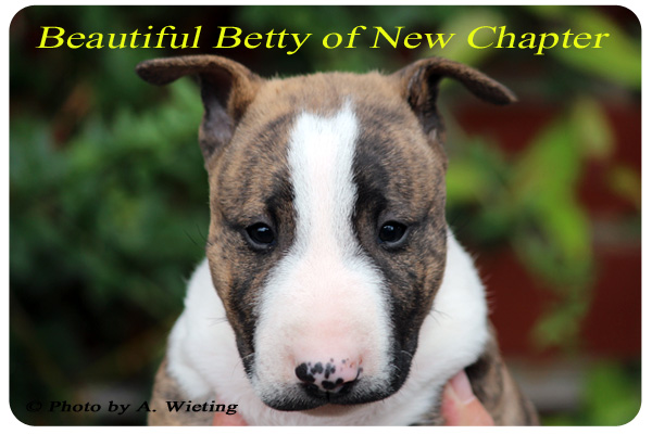 Beautiful-Betty-front-49Tag